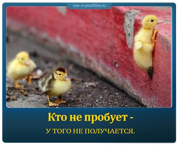 Позитивные картинки с надписями. Выпуск 14