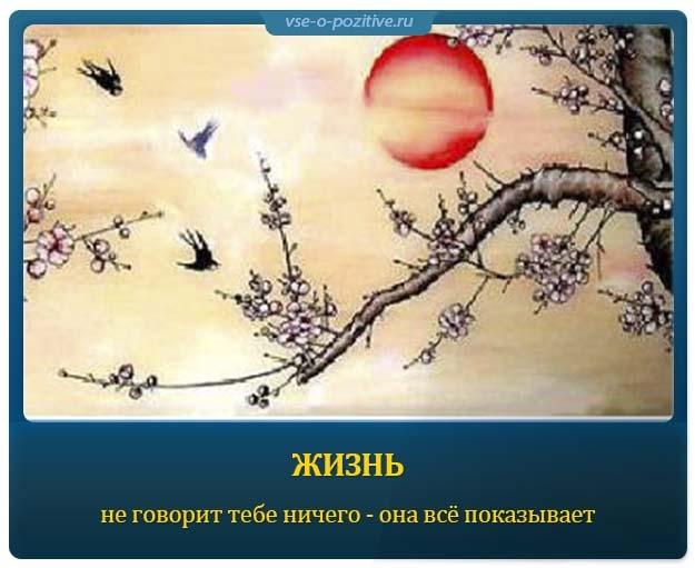Позитивные картинки с надписями. Выпуск 59