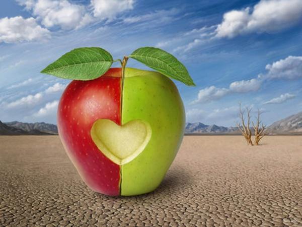 Притча о жизни - Две половинки одного яблока