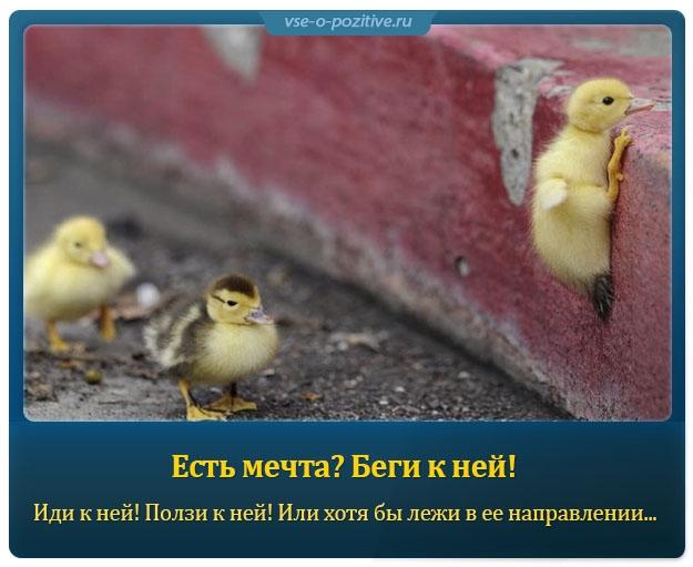 Позитивные картинки с надписями. Выпуск 79