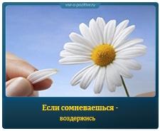 Позитивные картинки с надписями. Выпуск 92