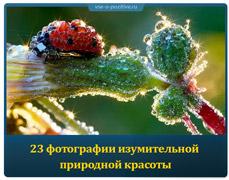 24 фотографии изумительной природной красоты
