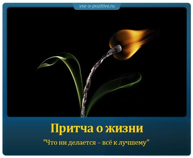 Притча о жизни