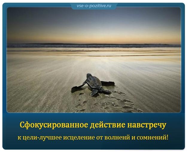 Позитивные картинки с надписями. Выпуск 96